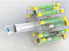 Mỹ dùng robot tiêu diệt loài cá xâm lấn
