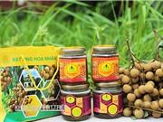 """Mật ong hoa nhãn Hưng Yên: Người làm mật lo người trồng nhãn """"đuổi"""" ong"""