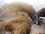 Siêu bão Meranti có sức gió giật cấp 17