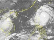 Siêu bão Meranti đổ bộ vào Trung Quốc, Biển Đông gió giật cấp 8-9