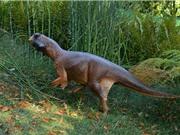 Loài khủng long biết đổi màu da để đánh lừa kẻ địch