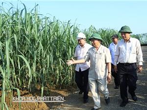 """Phát triển kinh tế vùng Bắc Trung Bộ: """"Liên kết gì cũng phải có doanh nghiệp"""""""