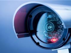 Nhiều camera an ninh tại Việt Nam bị tấn công DDoS; Cụ bà suýt chết vì bị ve mò cắn