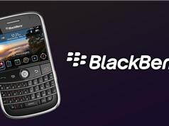 BlackBerry - thất bại  bắt nguồn từ thành công