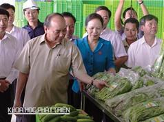 Thủ tướng Nguyễn Xuân Phúc: Nông nghiệp công nghệ cao là hướng đi quan trọng