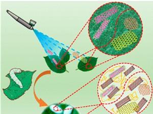 Việt Nam chế tạo thành công phức hệ Nano FGC điều trị ung thư; Trung Quốc tạo ra loại tơ siêu bền dẫn được cả điện