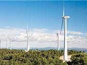 Việt Nam kêu gọi đầu tư vào các dự án điện gió, điện mặt trời; Ngăn chặn sự phát triển của bệnh Alzheimer