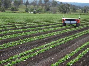 Robot nông nghiệp làm việc không cần Internet