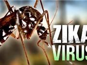 Thành phố Hồ Chí Minh công bố dịch Zika; Ra mắt chip 5G đầu tiên trên thế giới