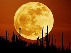 Ngày 14/11, người Việt được ngắm siêu trăng lớn nhất thế kỷ