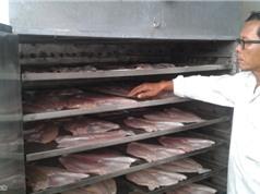 Chế tạo thành công máy sấy cá Dứa