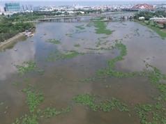 Chất lượng nguồn nước TPHCM đang xấu đi