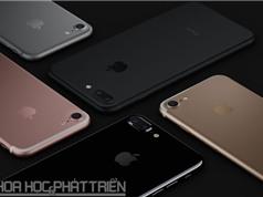 iPhone 7 và iPhone 7 Plus chính thức lên kệ ở Việt Nam