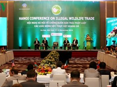 Việt Nam đăng cai hội nghị quốc tế bảo vệ động, thực vật hoang dã