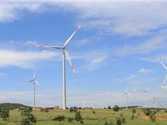 Nhà máy điện gió hơn 1.000 tỷ đồng ở Bình Thuận đi vào hoạt động; Apple thâu tóm trên 90% lợi nhuận ngành di động