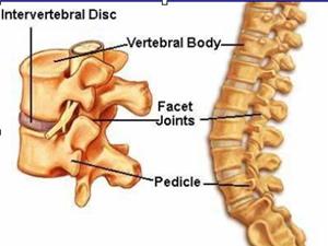 Lạng Sơn ứng dụng kỹ thuật bắt nẹp vít  trị gãy xương cột sống