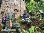 """Nhà khoa học trẻ cho 3 loài cây """"mượn"""" tên"""