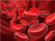 Miếng dán thông minh điều trị cục máu đông