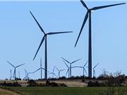 Cuộc đua năng lượng sạch của các đại gia công nghệ