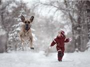 Mê mẩn trước tình bạn giữa trẻ em và những chú chó