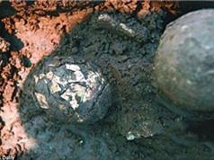 Phát hiện quả trứng 2.000 năm tuổi bên trong ngôi mộ cổ