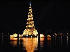 """Những cây thông Noel """"độc"""" nhất dịp Giáng sinh 2016"""