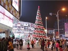 """Chiêm ngưỡng những cây thông Noel """"khổng lồ"""" tại Hà Nội"""