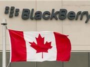 Bỏ smartphone, Blackberry hướng sang công nghệ xe tự lái