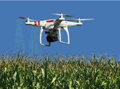 Máy bay không người lái - cộng sự mới của nông dân