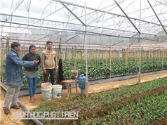 Gắn kết nông dân và doanh nghiệp: Thách thức trong việc tạo niềm tin
