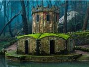 Bộ ảnh tuyệt đẹp về những phế tích hoang hóa khắp hành tinh
