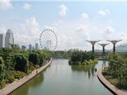 Những điểm tham quan miễn phí đầy hấp dẫn ở Singapore