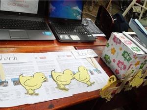 Đà Nẵng sắp triển lãm 31 dự án khởi nghiệp