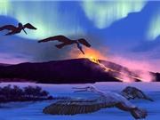 Chim hóa thạch 90 triệu năm tuổi giúp dự đoán biến đổi khí hậu