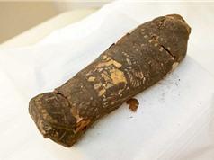 Phát hiện xác ướp nhỏ tuổi nhất thế giới