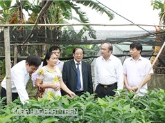 Bắc Giang: Nâng vị thế nông sản bằng công nghệ cao