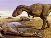 Khủng long tuyệt chủng do thời gian ấp trứng quá lâu?