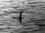 Những bức ảnh chứng minh quái vật hồ Loch Ness có thật