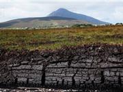 Nguy cơ bùng phát hàng tỷ tấn CO2 từ các đầm lầy than bùn Trung Phi