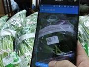Truy xuất nguồn gốc rau quả bằng điện thoại thông minh