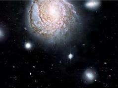 """Nguyên nhân các thiên hà """"đột tử"""" bất thường"""