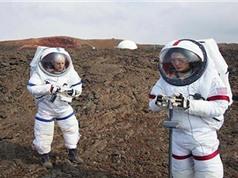 Nghiên cứu hành vi con người trong môi trường mô phỏng sao Hỏa