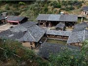 Ngôi làng không có muỗi suốt trăm năm