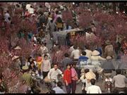 """Ảnh """"độc"""" về Tết Nguyên đán ở Hà Nội năm 1994"""