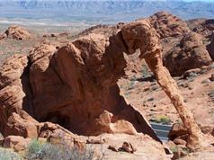 Chiêm ngưỡng những tảng đá khổng lồ giống hệt động vật