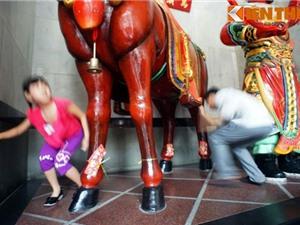 Khám phá phong tục chui bụng ngựa Xích Thố cầu may đầu năm
