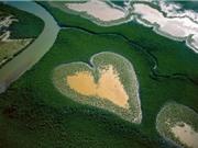 Chùm ảnh 10 trái tim khổng lồ giữa lòng thiên nhiên