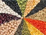 10 thực phẩm giàu chất xơ cho người mắc bệnh tiểu đường
