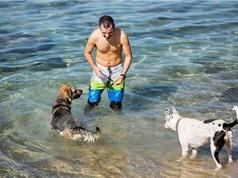 Dịch vụ kỹ thuật số chăm sóc chó đầu tiên trên thế giới