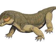 Phát hiện loài vật đầu tiên trong lịch sử biết dùng độc hạ sát con mồi